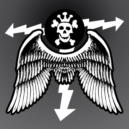 wing figure: Vector skull with lightnings and wings, black mark