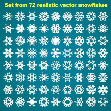 Set from 72 realistic vector snowflakes Vector