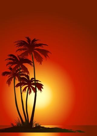 Playa tropical con palmeras  Ilustración de vector