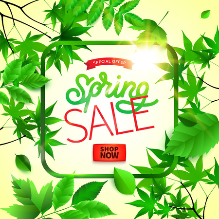 Spring background with green leaves and frame on trendy geometric backdrop. Vector illustration. Fresh template design for posters, flyers or vouchers. Banque d'images - 118088738