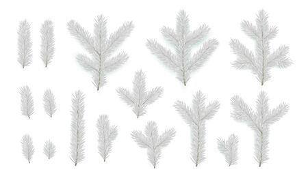 Set of Pine fir silver branches. Spruce branches realistic. Christmas tree Set isolated on white background. Decorative design elements. Xmas decor. Decoration Natural objects. Vector illustration