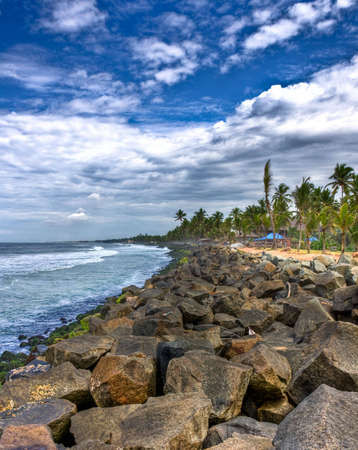 coast line of kovalam in kerala full of rocks and coconut trees photo