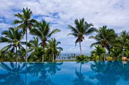 Sea view infinity pool with coconut trees at a resort in Kovalam, Kerala, India photo