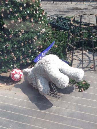 left behind: Teddy bear