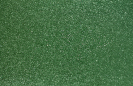 vealy: top view leather background