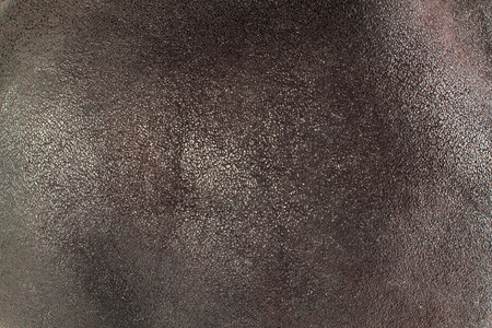 grizzle: top view leather background