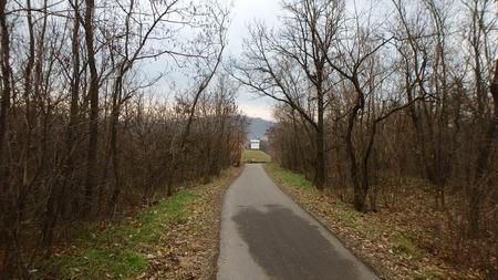 Bike road in Alder valley