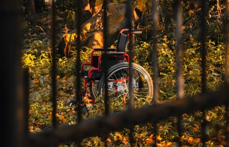 untidy: Empty wheelchair in untidy garden at sunset, shot through the bars. Concept of loneliness and despair. Focus on wheelchair