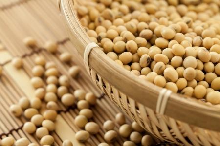 soybean: Soy beans shooting in studio