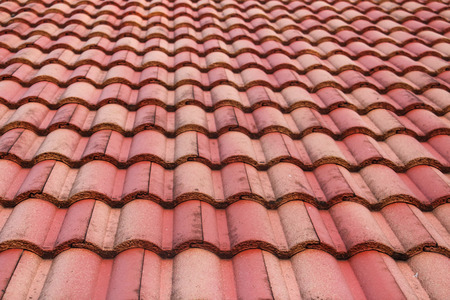 shingle: The roof on my house Stock Photo
