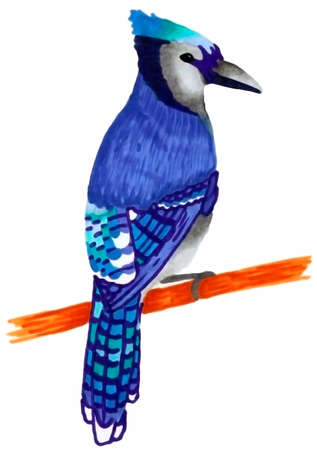 Rare beautiful blue and blue woodpecker. A beautiful bird on a branch. Technique alcohol markers. Materials alcohol markers.