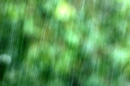 drench: Fondo natural con lluvia
