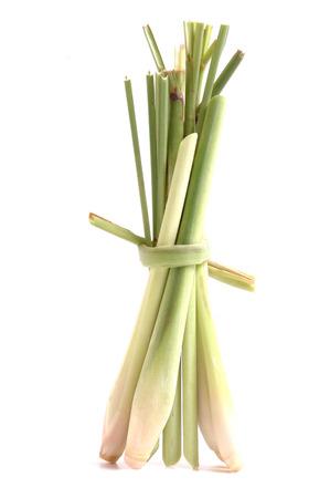 lemon grass isolated on white photo