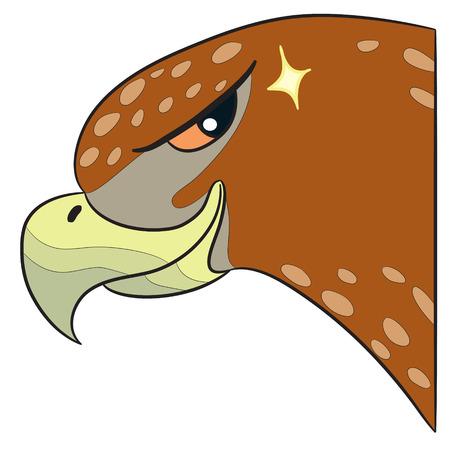 looking: vector cartoon character hawk looking Illustration
