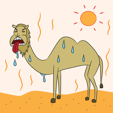 hot summer: vector cartoon character camel desert