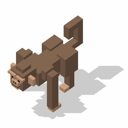 rectangle: isometric rectangle design monkey Stock Photo
