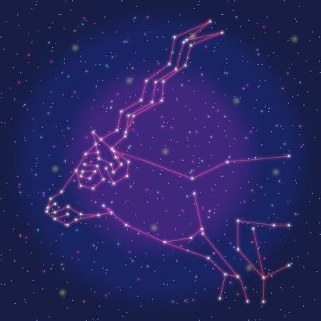 asterism: asterism design red antelope