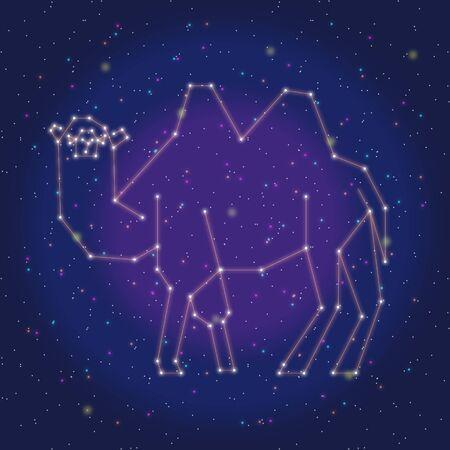 asterism: asterism design orange camel
