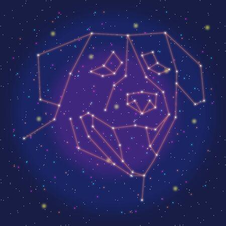 asterism: asterism design red dog