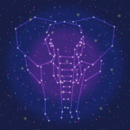 asterism: asterism design purple elephant