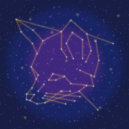 asterism: asterism design orange fox