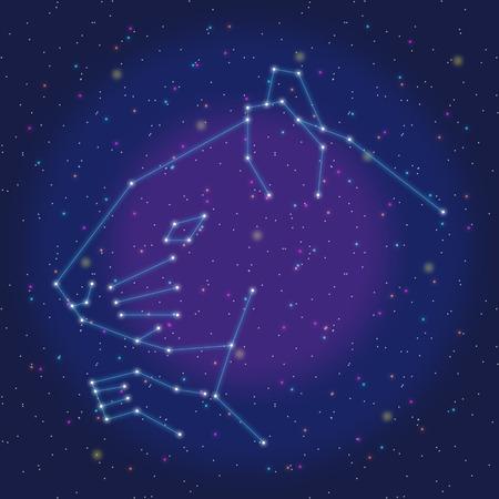 asterism: asterism design blue rat Illustration
