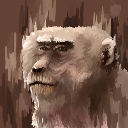 digital painting: illustration digital painting animal monkey Stock Photo