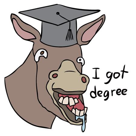 stupid: Vector cartoon donkey degree stupid