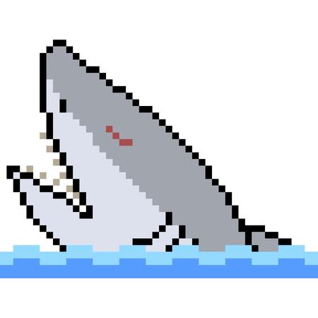 vector pixel art shark isolated