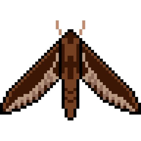 Pixel art insect moth
