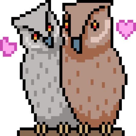 vector pixel art owl couple isolated