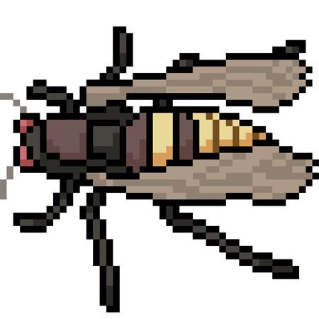 vector pixel art insect moth isolated cartoon Ilustracja