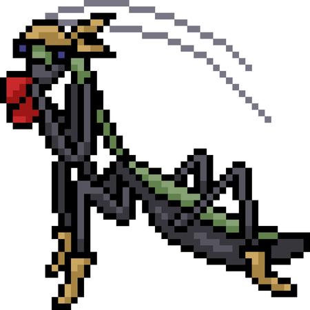 vector pixel art mantis boxing isolated cartoon