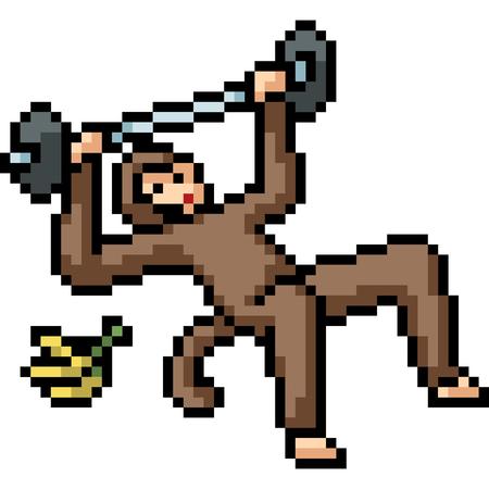 vector pixel art fitness ape isolated cartoon