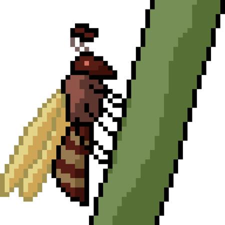 vector pixel art hornet isolated cartoon