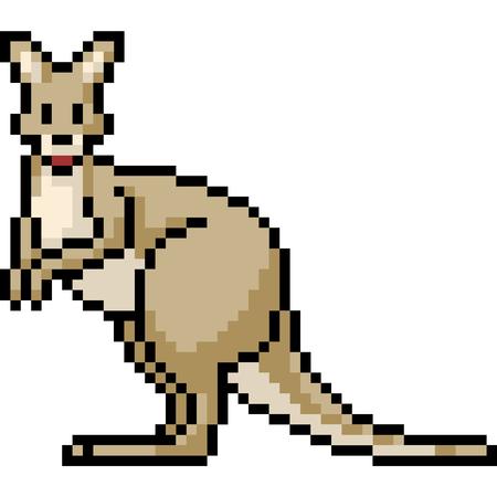vector pixel art kangaroo isolated cartoon
