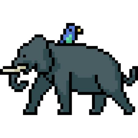 vector pixel art elephant bird isolated cartoon Illusztráció