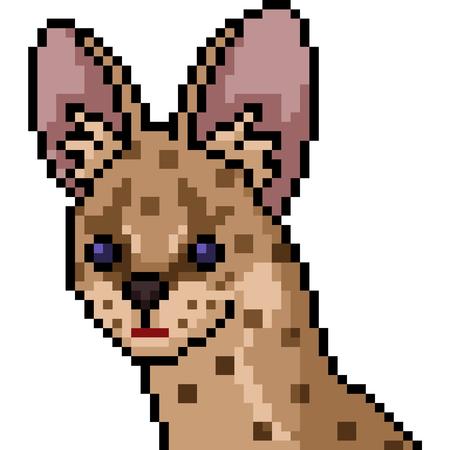 vector pixel art wild cat isolated cartoon