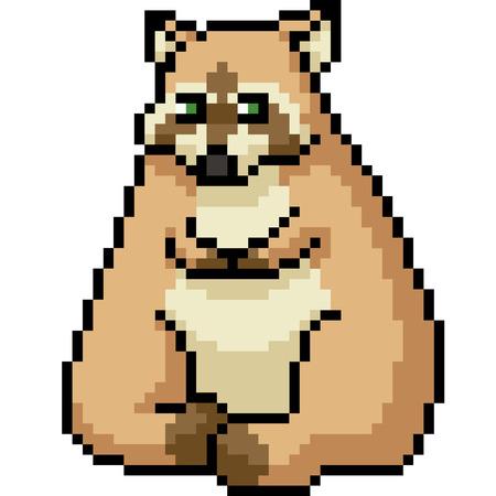 vector pixel art fat raccoon isolated cartoon