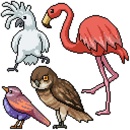 pixel art set isolated wild bird species