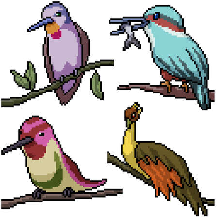 pixel art set isolated bird on branch