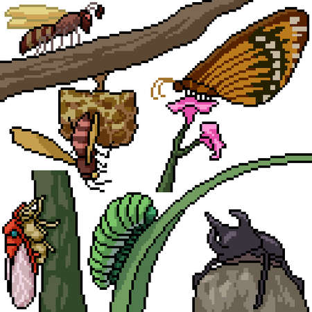 pixel art set isolated insect species