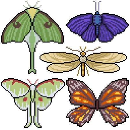 pixel art set isolated moth top view
