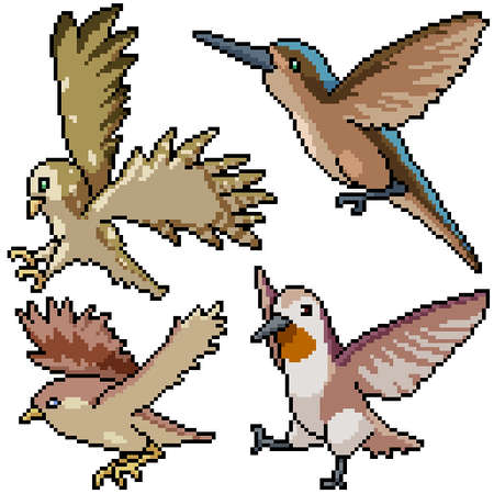 pixel art set isolated bird flying