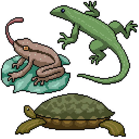 pixel art set isolated small amphibian reptile