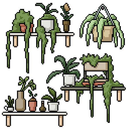 pixel art set isolated plant shelf decoration