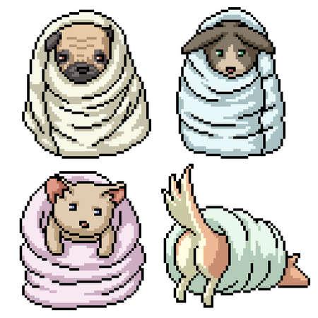 pixel art of pet playing blanket