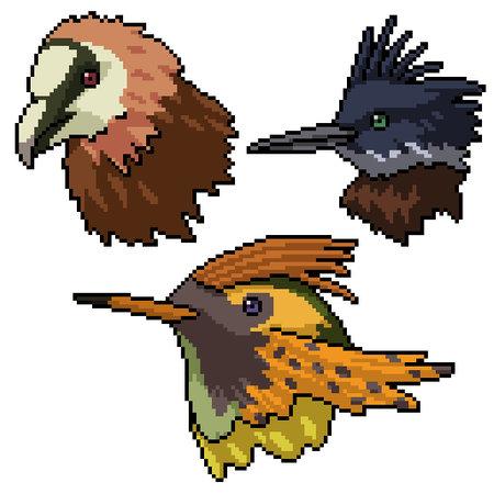 pixel art of wild bird head 矢量图像