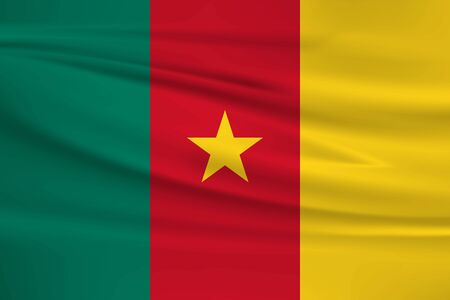 Flag Of Cameroon Stock Illustratie