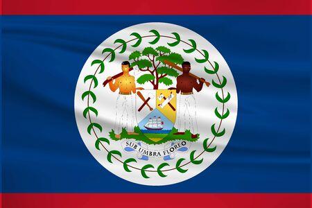 Flag Of Belize Stock Illustratie